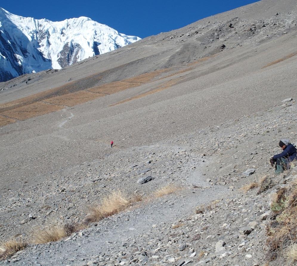 Doesn't look steep - but feels like it!